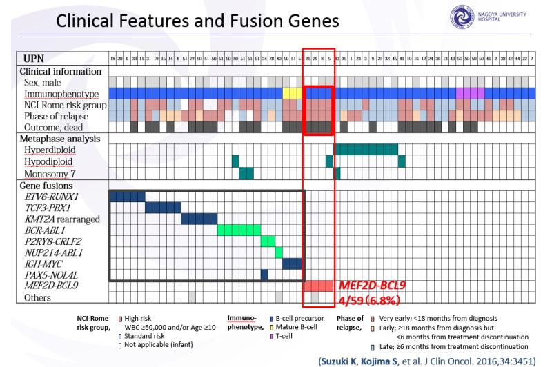 初回治療抵抗性や再発した59人の小児ALLにRNAシーケンス解析をおこない、4人にこれまで報告がないMEF2D-BCL9という新規融合遺伝子を発見