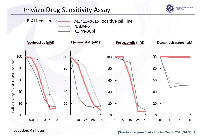MEF2D-BCL陽性細胞株 薬剤感受性試験