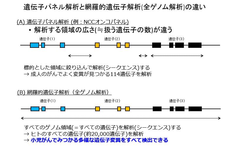 遺伝子パネル解析と網羅的遺伝子解析(全ゲノム解析)の違い